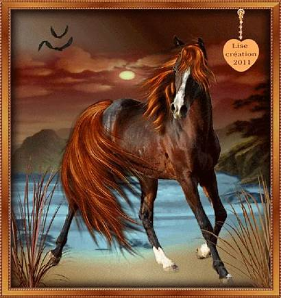 Cheval Gifs Chevaux Cadre Centerblog Horses Animated