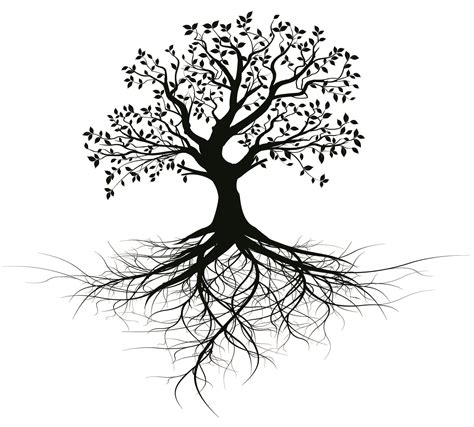 i will give you old black vector tree with root design for
