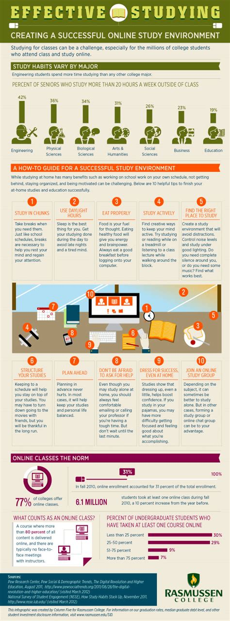 Infographic Creating A Successful Online Study Environment