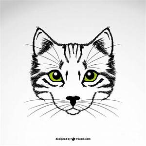 Cat Eye Vectors, Photos and PSD files | Free Download