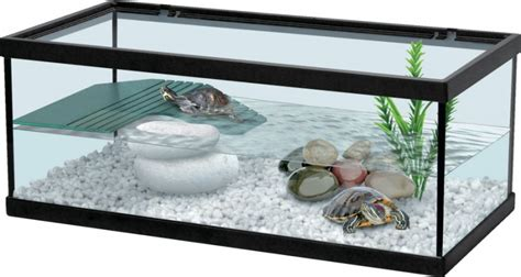 aquarium tortue hibien enclos animaloo