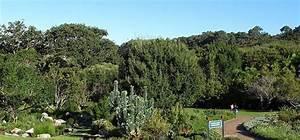 Les Jardins Du Sud : voyage jardins de kirstenbosch afrique du sud comptoir ~ Melissatoandfro.com Idées de Décoration