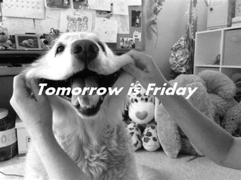 15 Tomorrow Is Friday Quotes To Get You Excited On Thursday
