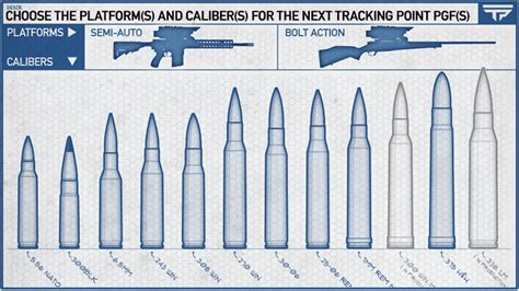 images    ballistics chart trajectory rifle bullet caliber charts size comparison