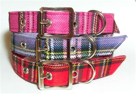 Collars For Chihuahuas