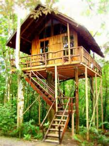 hotel tree house in puntarenas costa rica