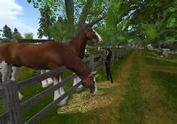... - Play Horse Games - Free Online Horse Games - Virtual Horse Games