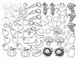 Coloring Vegetables Fruits Fruit Printable Clipart Vegetable Library Clip sketch template