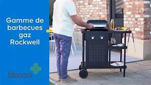 Barbecue A Gaz Castorama : castorama barbecue pierre free barbecue with castorama barbecue pierre simple barbecue en dur ~ Melissatoandfro.com Idées de Décoration
