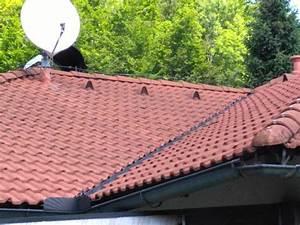 Gebrauchte Dachziegel Verkaufen : bramac alpendachstein ziegel 16 jahre alt farbe ziegelrot ~ Michelbontemps.com Haus und Dekorationen