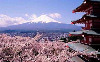 Japan Fuji Cherry Wallpapers Blossoms Mount Blossom