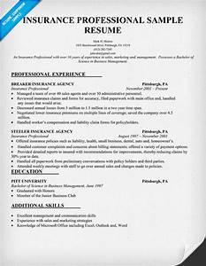 Insurance agent resume for insurance agent for Insurance professional resume