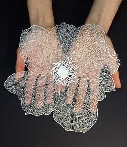 Paper, Carving, Artist, -, Maud, White, Sculptures, Photos, Ver, U0026, Vie, U2026