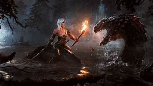 The Witcher Ciri Wallpapers HD Desktop And Mobile