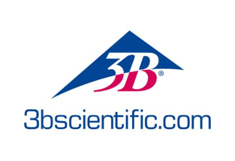 The In 3b by 3b Scientific Gmbh German Healthcare Export E V