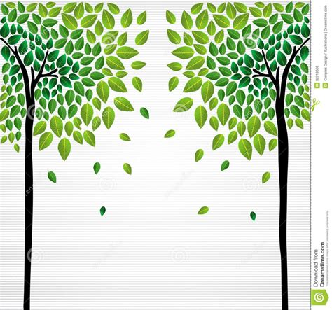 drawing trees  leaves google search corn hole