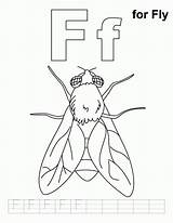 Fly Coloring Mouche Letter Flying Sheets Sheet Colouring Kleurplaat Vlieg Practice Coloriages Animaux Kleurplaten Blank Coloriage Album Popular Library Clipart sketch template