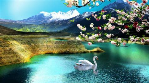hd nature wallpapers flowers cute desktop images nature background images windows 10