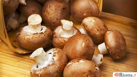 Come Cucinare I Funghi by Come Cucinare I Funghi Ricetta It