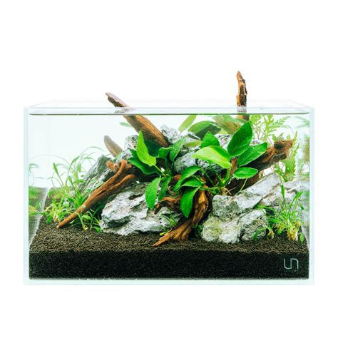 Setting Aquascape by Aquascaping Starter Pack Desktop Set Buce Plant