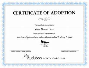 blank adoption certificate template gallery template With blank adoption certificate template