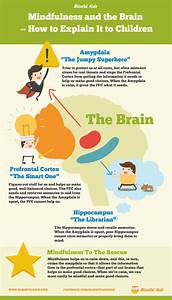 An Introduction To Integrating The Brain  With Dr  Dan