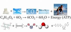 Chemical Equation Definition Of Chemical Equation By The ...