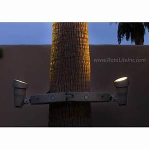 Volt Landscape Lighting Reviews Palm Tree Ring Light Roto Lite Inc Led Landscape Lighting