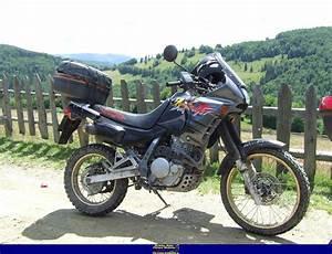 Honda Dominator 650 Fiche Technique : 1994 honda nx650 dominator moto zombdrive com ~ Medecine-chirurgie-esthetiques.com Avis de Voitures