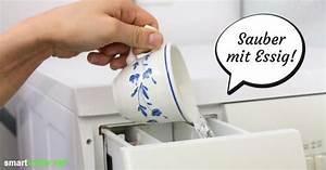 Essig Geruch Neutralisieren : wsche riecht nicht frisch gewaschen nicht ganz frischer schwei stinkt nicht with wsche riecht ~ Bigdaddyawards.com Haus und Dekorationen
