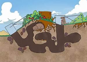 Groundhog Den Diagram