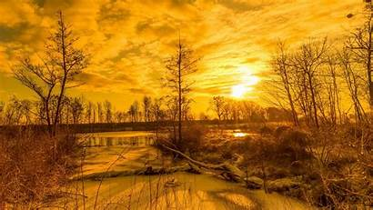 Nature Gold Yellow Landscape Sunlight Background Desktop
