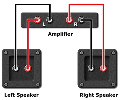 Guitar Input Wiring White Wire Positive by How To Check If Your Speakers Are Wired Correctly