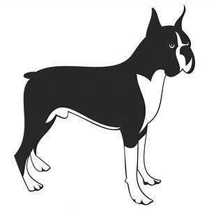 Vector for free use: Boxer dog vector