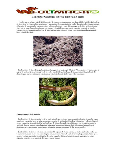 Lombrices en El Mundo Naturaleza Sicología y ciencia