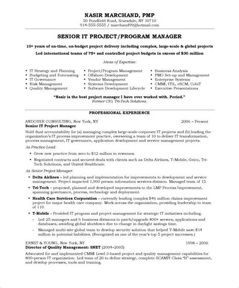 Project Manager Sle Resume Format by It Project Manager Page1 It Resume Sles Project