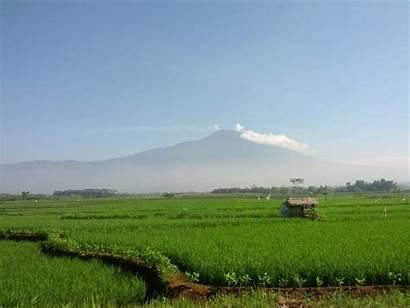 Indonesia Geothermal Capacity Java Central Slamet Mount