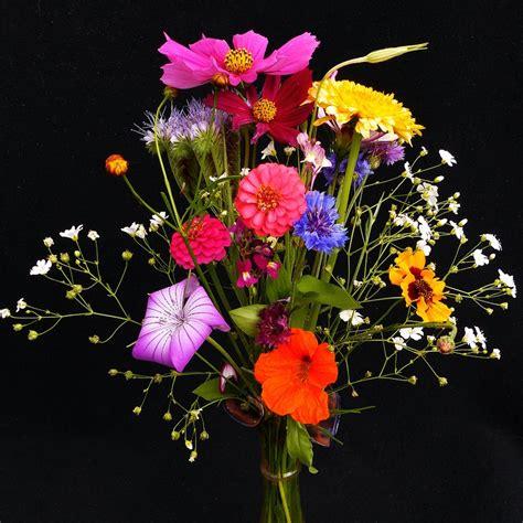 bouquet de fleurs anniversaire photo bouquet d anniversaire fleurs des 183 photo gratuite sur pixabay