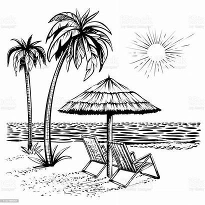 Sketch Line Resort Landscape Relaxing Sea Palm