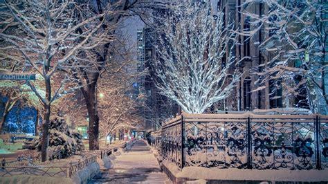 wallpaper il street illinois chicago trees