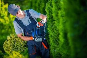 Taille Des Haies : entretien des espaces verts jardins haies prestation ~ Dallasstarsshop.com Idées de Décoration