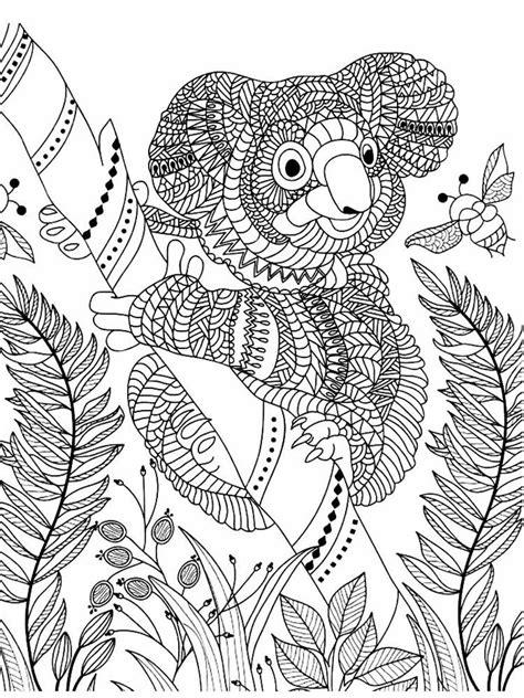koala coloring pages  adults printable   koala coloring pages