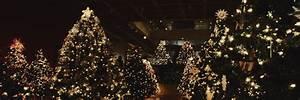 christmas tree headers   Tumblr