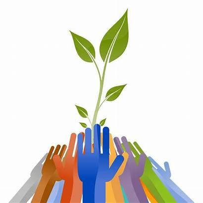 Growth Development Team Organisational Committee Strengths Focused
