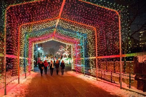 lights chicago christmas holiday lincoln park zoo zoolights winter light tour display spectacular train magic movie displays illinois events festival