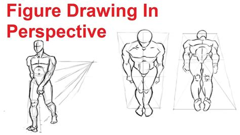 figure drawing lesson    draw  human figure