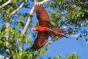 Peru Moments Of Nature Konrad Wothe