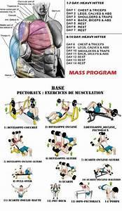 Chest Workout Mass Program