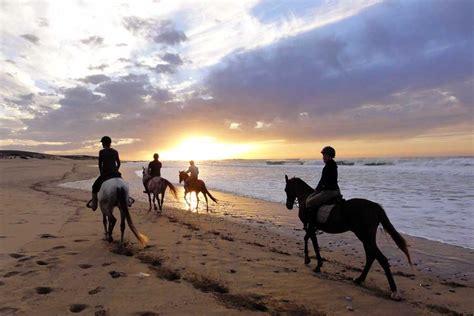 mixez s 233 jour 233 questre et randonn 233 e 224 cheval au maroc
