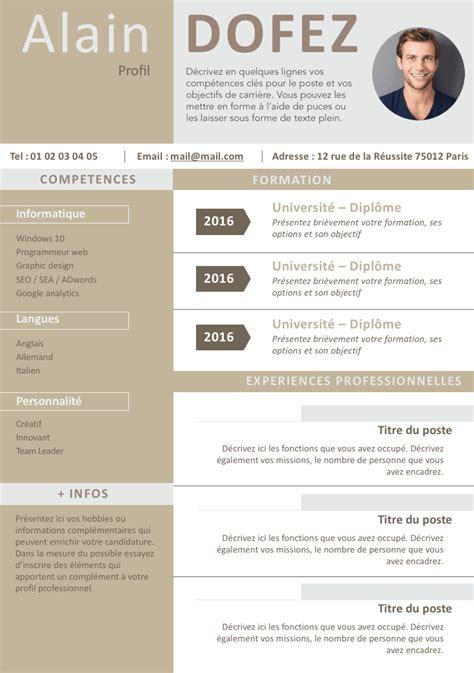 Cv Professionnel Gratuit by Cv Clean Et Moderne Cv Exemple Cv Cv